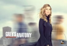 Grey's Anatomy - Season 16 - ABC