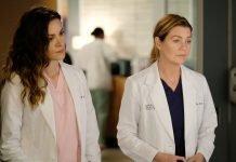 Grey's Anatomy - S16E15 - Snowblind